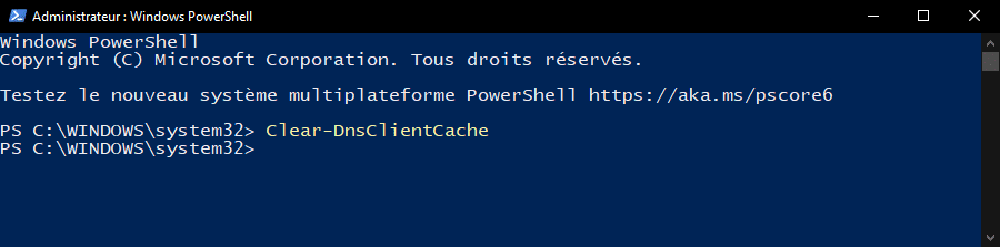 Vider le cache DNS de Windows avec PowerShell